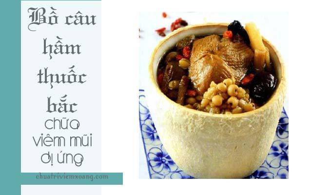 Chữa viêm mũi dị ứng bằng món bồ câu hầm