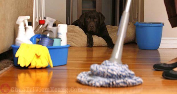 Dọn dẹp nhà cửa sạch sẽ ngừa tác nhân gây dị ứng