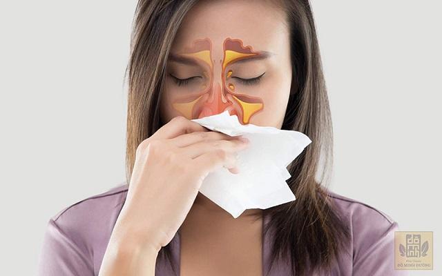 Viêm mũi dị ứng là bệnh hô hấp dễ gặp, gây nhiều khó chịu cho người bệnh